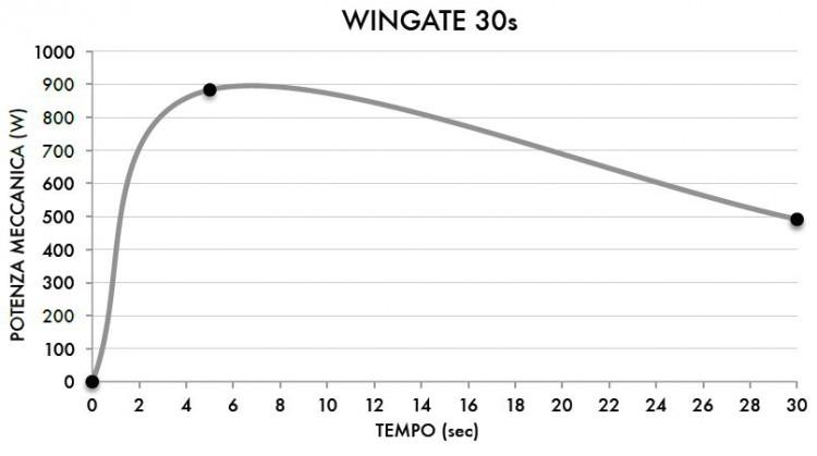 wingate anze2