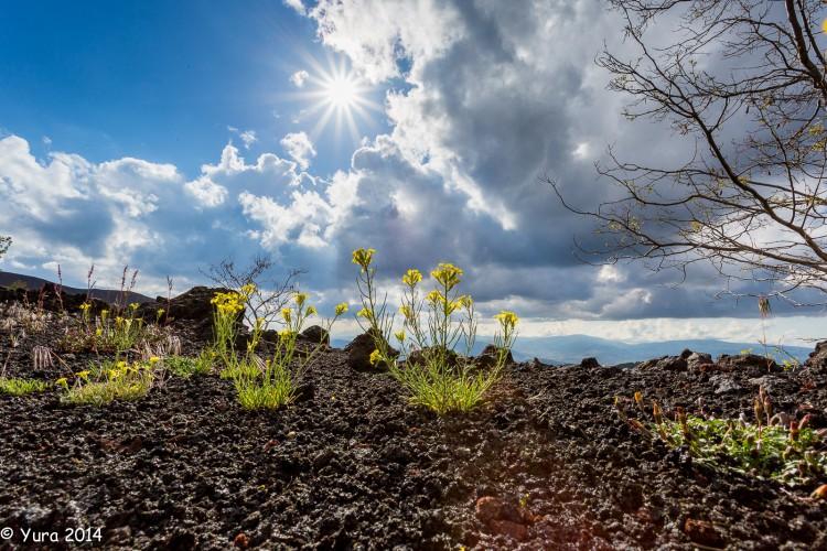 Etna 21