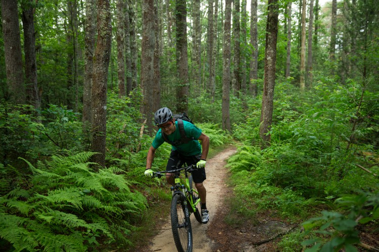 Trek in North Carolina, June 2014.