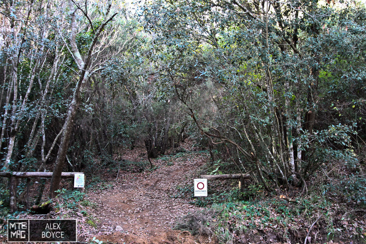 This is where the test ended, the bottom of trail 301, in Punta Ala.