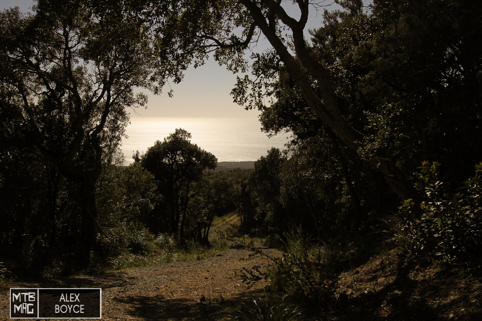 The tops of the trails in Punta Ala gave us ample chance to test climbing and descending.