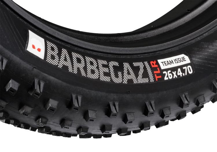 12996_A_3_Barbegarzi_Tire