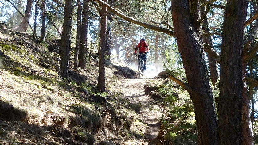 patsch trail (2)