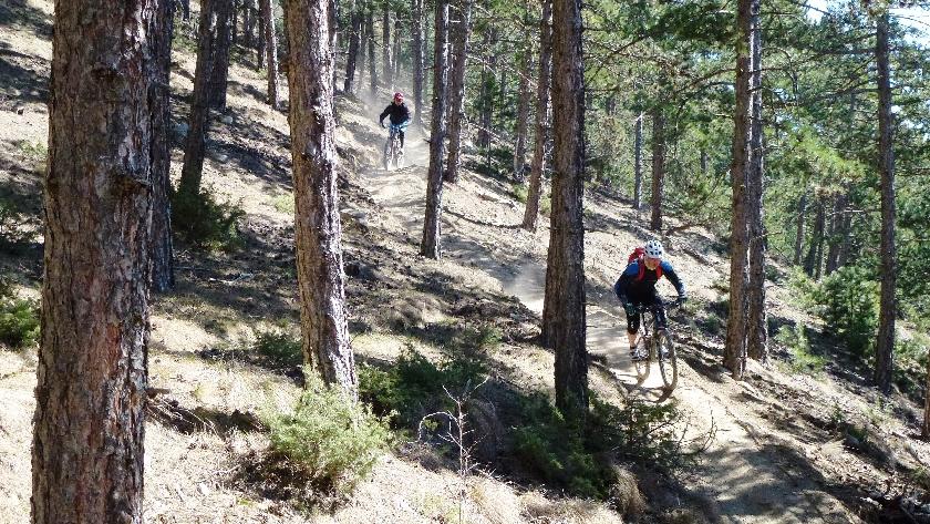 patsch trail (3)