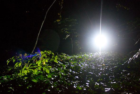 Illuminazione Mtb : Luci e notturne mtb mag