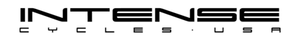 Intense logo 1