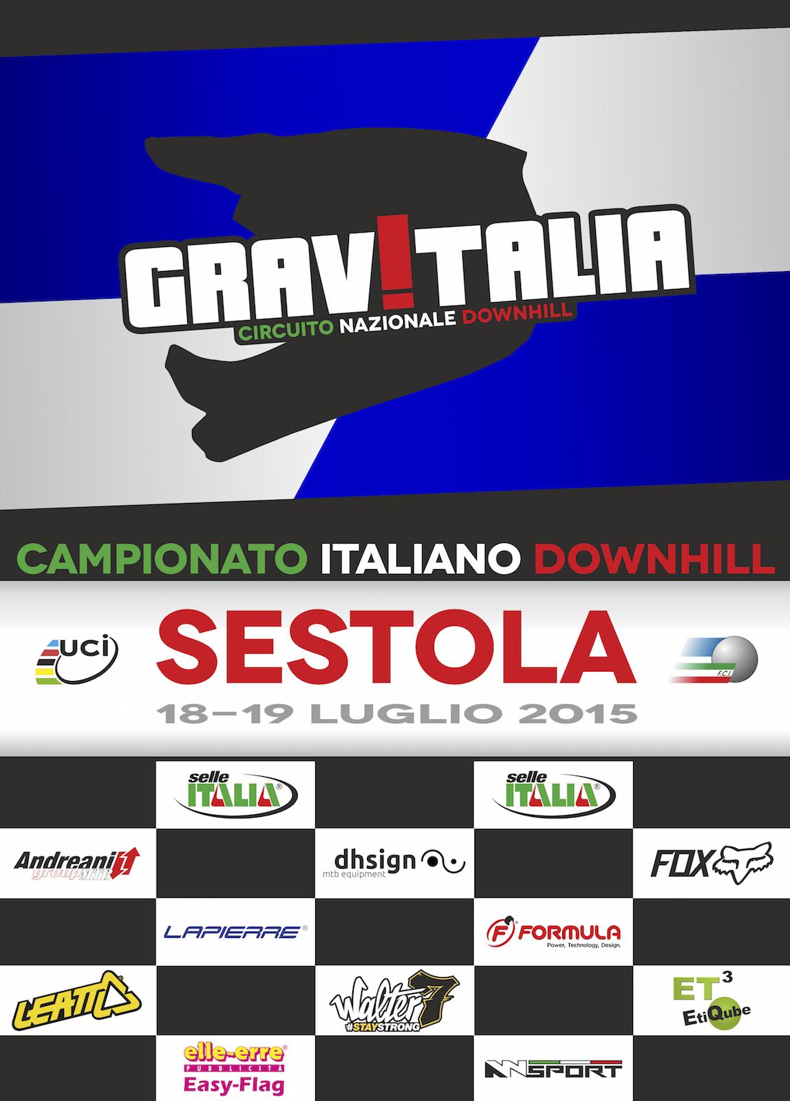 locandina 2015 italiano