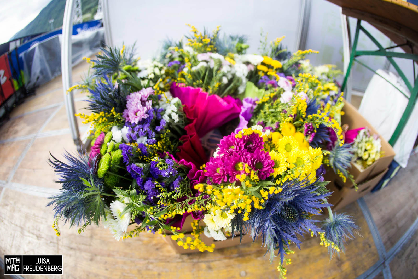 Blumen...