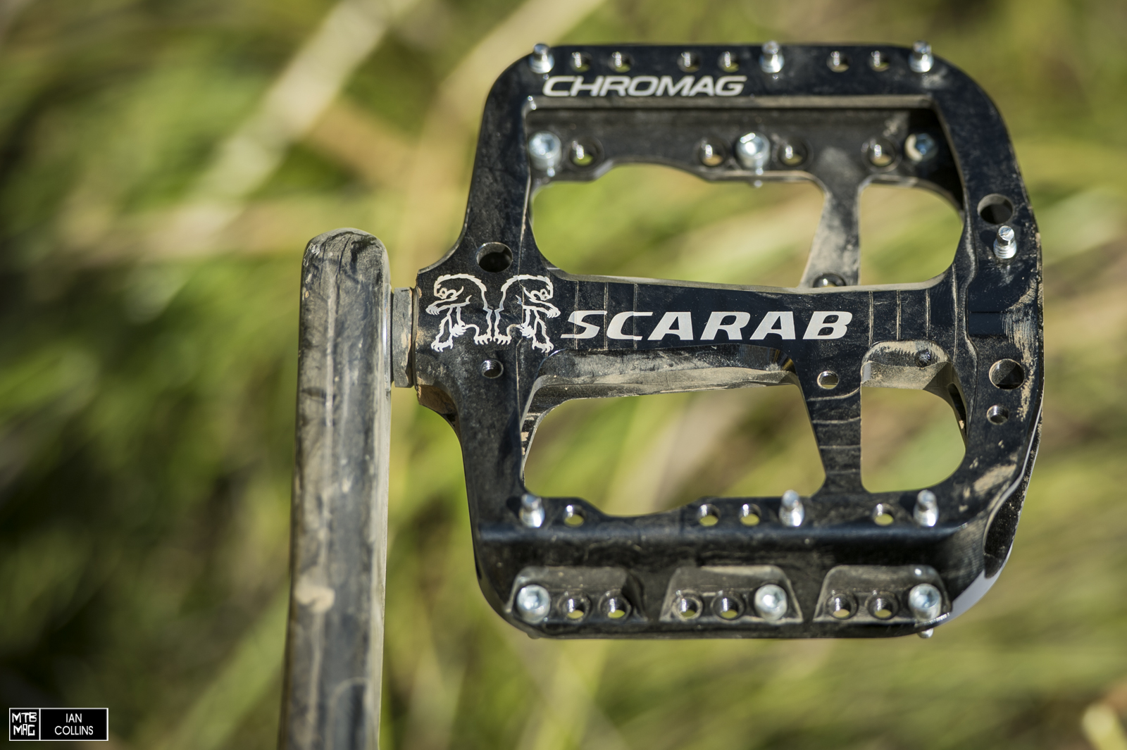 Chromag Scarab pedals.  Quite popular up in Whistler.