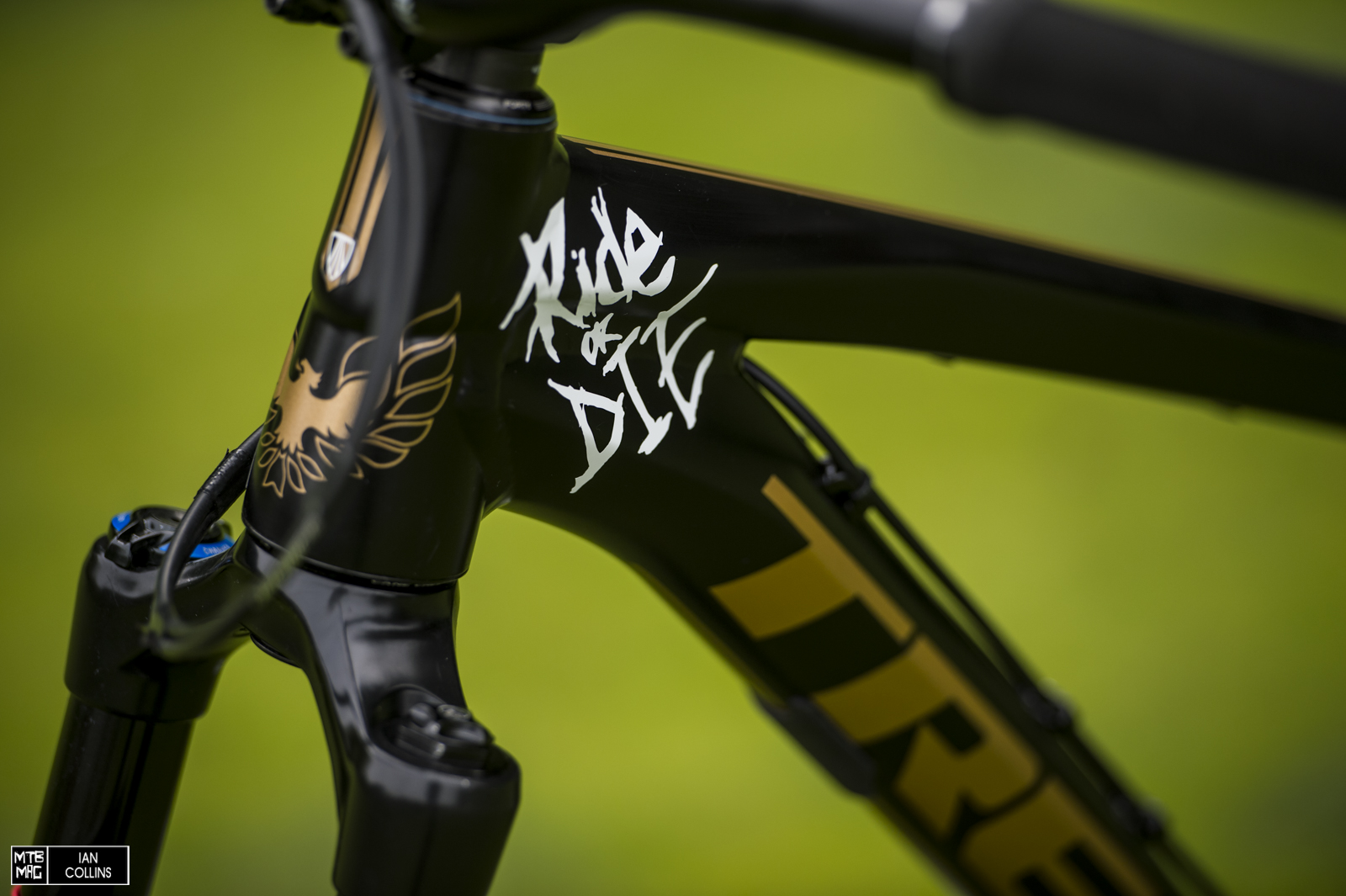 Mtb Mag Com Mountain Bike Magazine Bike Check R Dog