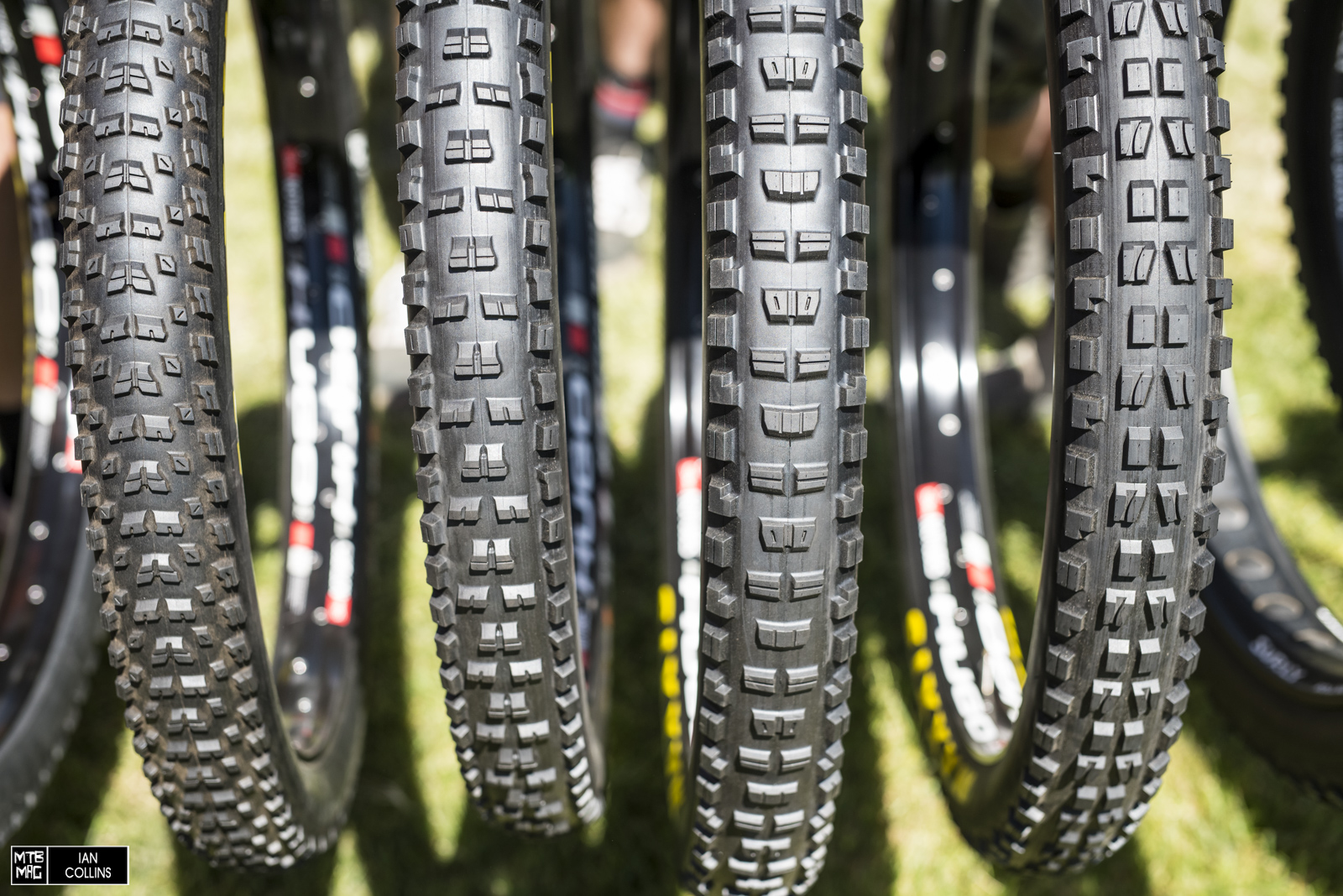 "The classic Maxxis tread patterns in 29"" ++."