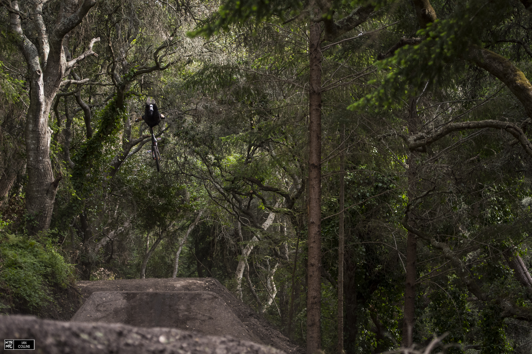 Andreu with a huge superman in the woods.