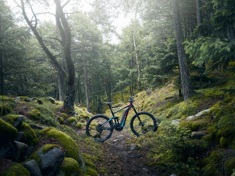 Full-E+ 0 SX woods